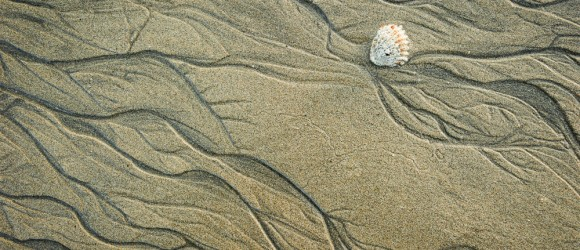 patterns in sand and shell