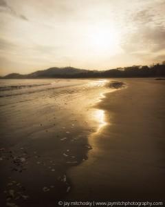 backlit tide along beach