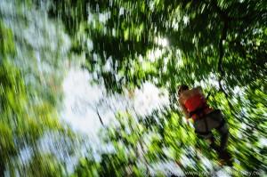 zipliner blurring past trees